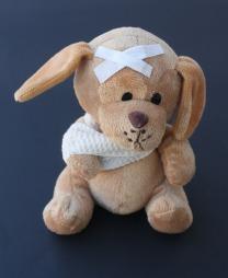 teddy-242831_1920